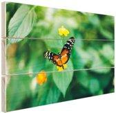 Vlinder op bloem Hout 80x60 cm - Foto print op Hout (Wanddecoratie)