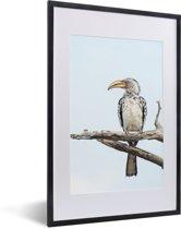 Foto in lijst - Een lichtblauwe lucht boven een Zuidelijke geelsnaveltok fotolijst zwart met witte passe-partout 40x60 cm - Poster in lijst (Wanddecoratie woonkamer / slaapkamer)