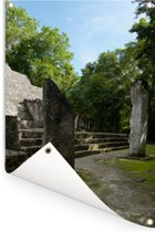 Maya ruïnes in de stad van Calakmul Tuinposter 80x120 cm - Tuindoek / Buitencanvas / Schilderijen voor buiten (tuin decoratie)