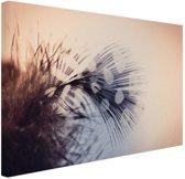 Veer  Canvas 120x80 cm - Foto print op Canvas schilderij (Wanddecoratie woonkamer / slaapkamer)