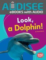 Look, a Dolphin!