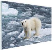Ijsbeer op Spitsbergen Glas 30x20 cm - klein - Foto print op Glas (Plexiglas wanddecoratie)