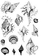 Siliconen Stempels Shells   Stempels schelpen