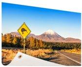 Kiwi bord Nieuw-Zeeland Tuinposter 60x40 cm - klein - Tuindoek / Buitencanvas / Schilderijen voor buiten (tuin decoratie) / Zee en Strand