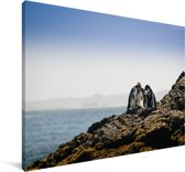 Vier humboldtpinguïns op de rotsen bij de zee Canvas 140x90 cm - Foto print op Canvas schilderij (Wanddecoratie woonkamer / slaapkamer)