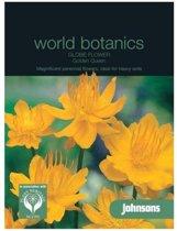 World Botanics - Kogelboterbloem Golden Queen