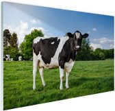 FotoCadeau.nl - Zwart witte Koe Glas 90x60 cm - Foto print op Glas (Plexiglas wanddecoratie)