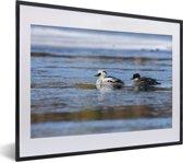 Foto in lijst - Twee nonnetjes in het water fotolijst zwart met witte passe-partout klein 40x30 cm - Poster in lijst (Wanddecoratie woonkamer / slaapkamer)