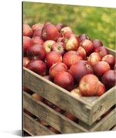 Houten kist met verse appels Aluminium 30x40 cm - klein - Foto print op Aluminium (metaal wanddecoratie)
