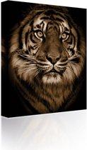 Sound Art - Canvas + Bluetooth Speaker Tiger's Face (23 x 28cm)