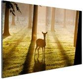 Hert in het bos foto afdruk Aluminium 180x120 cm - Foto print op Aluminium (metaal wanddecoratie) XXL / Groot formaat!