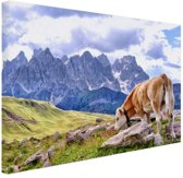 FotoCadeau.nl - Koeien grazen alpenweide Canvas 60x40 cm - Foto print op Canvas schilderij (Wanddecoratie)