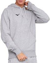 Mizuno Terry Hoodie grijs hoodie heren (32EC7B60-07)
