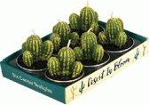 Cactus waxinelichtjes (set van 6 stuks)