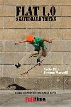 Flat 1.0: Skateboard Tricks