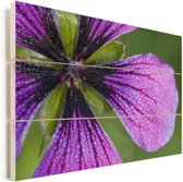 Paarse geranium blaadjes Vurenhout met planken 60x40 cm - Foto print op Hout (Wanddecoratie)