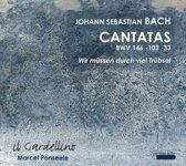 Cantatas Bwv 146-103-33 Wir Musse