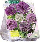 Allium (Sierui) bloembollen - mix Paars-Wit - 2 x 15 stuks