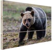 FotoCadeau.nl - Beer  Hout 120x80 cm - Foto print op Hout (Wanddecoratie)