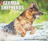 Duitse Herder Kalender 2020 Boxed