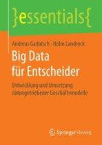 Big Data F r Entscheider