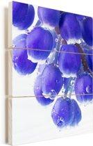 Druivenhyacint bloeit met waterdruppels op de druiven Vurenhout met planken 80x120 cm - Foto print op Hout (Wanddecoratie)