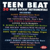 Teen Beat, Vol. 1 (Ace)