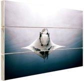 Onderaanzicht mantarog in de oceaan Hout 160x120 cm - Foto print op Hout (Wanddecoratie) XXL / Groot formaat!