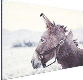 Ezel in de sneeuw Aluminium 90x60 cm - Foto print op Aluminium (metaal wanddecoratie)