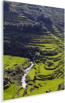 De zon straalt op de groene Rijstterrassen van Banaue in de Filipijnen Plexiglas 80x120 cm - Foto print op Glas (Plexiglas wanddecoratie)