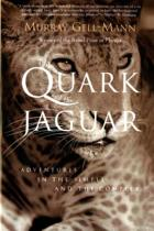 The Quark and the Jaguar