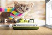 FotoCadeau.nl - Katje met kleurrijke sjaal Fotobehang 380x265