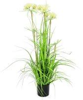 Europalms Hypoxis kunstplant -120 cm hoog