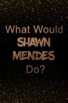 What Would Shawn Mendes Do?