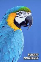 Macaw Notebook: Blue and Yellow Macaw - Ara ararauna - Composition Book 150 pages 6 x 9 in. - College Ruled - Writing Notebook - Lined