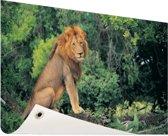 Leeuw zit op een tak Tuinposter 120x80 cm - Tuindoek / Buitencanvas / Schilderijen voor buiten (tuin decoratie)