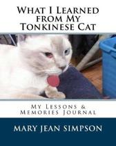 What I Learned from My Tonkinese Cat