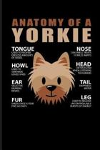 Anatomy of a Yorkie