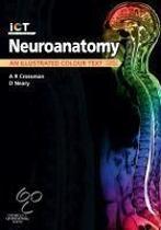Neuroanatomy,