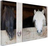 Paarden in de stal Canvas 60x40 cm - Foto print op Canvas schilderij (Wanddecoratie)