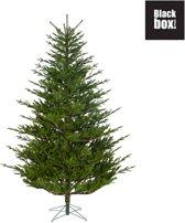 Black Box burlington kunstkerstboom groen maat in cm: 230 x 155