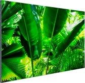 Tropische bladeren in jungle  Aluminium 90x60 cm - Foto print op Aluminium (metaal wanddecoratie)
