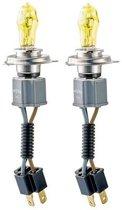 Evo Formance Autolampen Alfas 2800k H4 75/85 Watt 12 Volt  Per Stuk