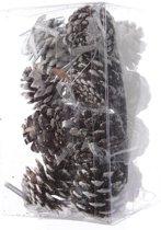 Dennenappel hangers met sneeuw