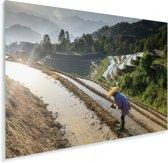 Chinese boer in de Rijstterrassen van Lóngjĭ in China Plexiglas 180x120 cm - Foto print op Glas (Plexiglas wanddecoratie) XXL / Groot formaat!