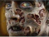 Rottende zombie nepwonden - Premium - Schmink