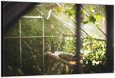 Dibond – Greenhouse– 120x80cm Foto op Aluminium (Wanddecoratie van metaal)