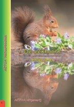 ACTUA Natuurboeken 1 - De eekhoorn
