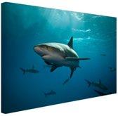 FotoCadeau.nl - Groep haaien Canvas 80x60 cm - Foto print op Canvas schilderij (Wanddecoratie)