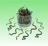 8x Plastic speelgoed dieren slangen 15 cm